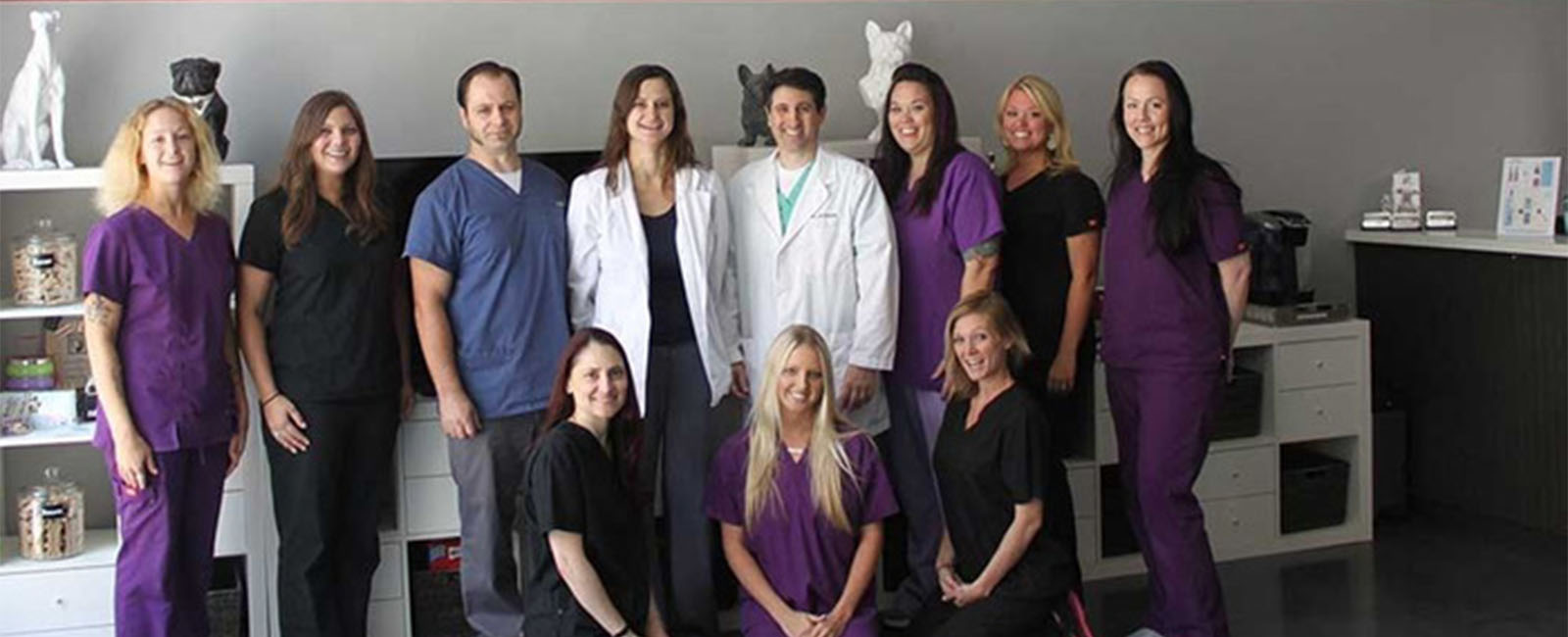 Homepage Team Picture of VCA Market Street Animal Hospital