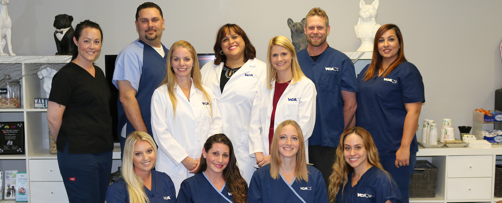 Team Picture of VCA Market Street Animal Hospital