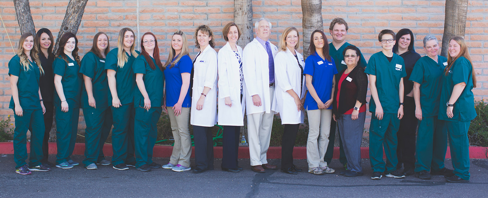 Team Picture of VCA McCormick Ranch Animal Hospital