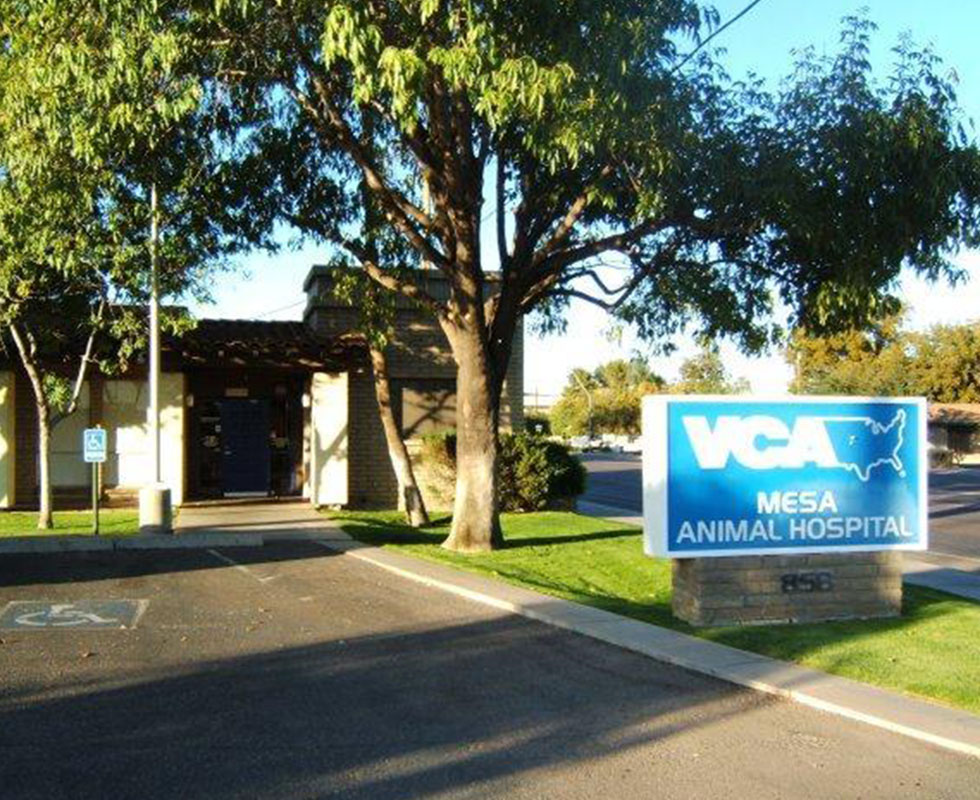 Hospital Picture of  VCA Mesa Animal Hospital