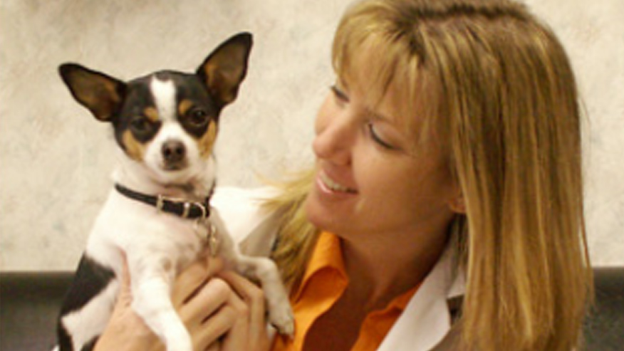 VCA Mesa Animal Hospital Pet Counseling