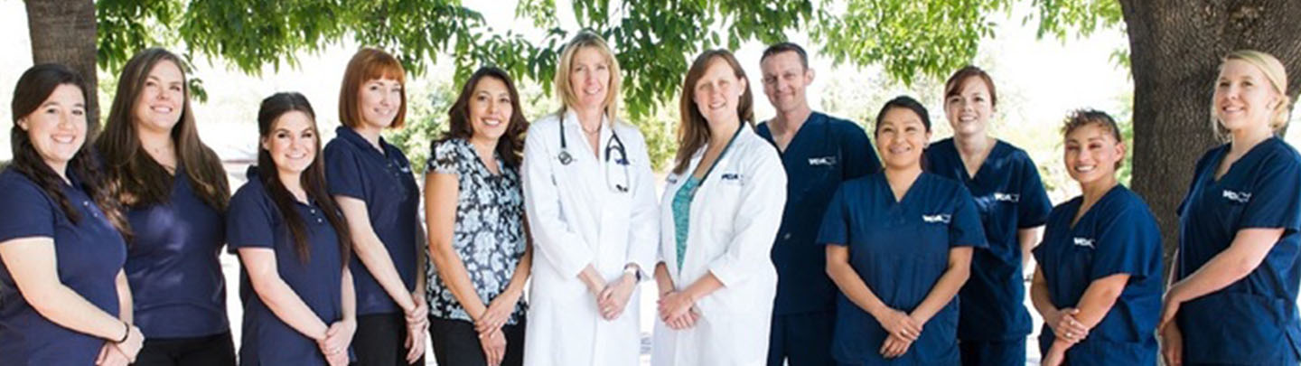 Team Picture of VCA Mesa Animal Hospital