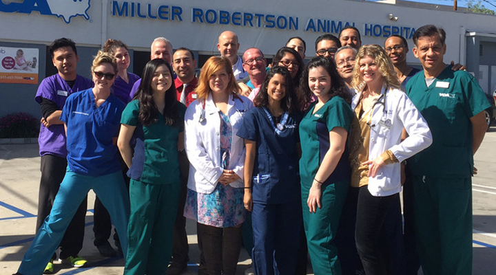 Team Picture of VCA Miller-Robertson Animal Hospital