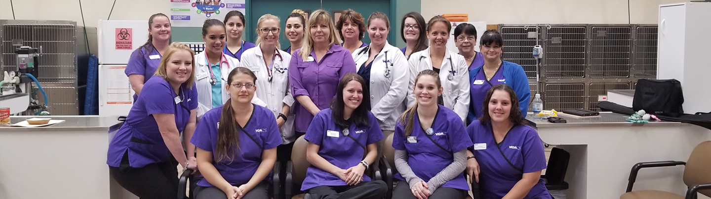 Team Picture of VCA Miracle Mile Animal Hospital