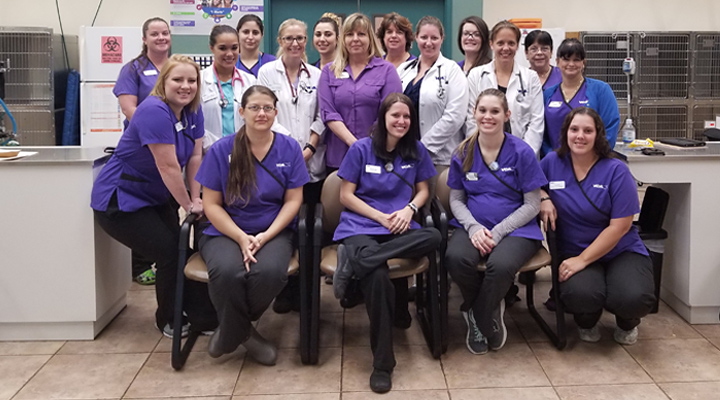 Homepage Team Picture of VCA Miracle Mile Animal Hospital