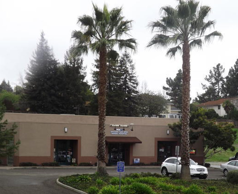 Hospital Picture of VCA Mission San Jose Animal Hospital