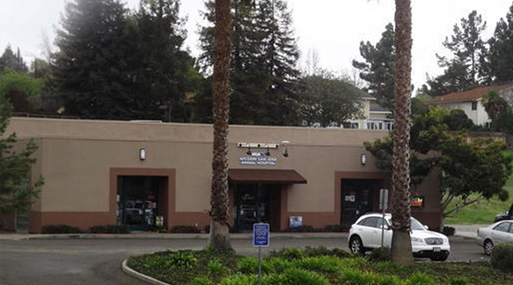 Homepage Hospital Picture of VCA Mission San Jose Animal Hospital