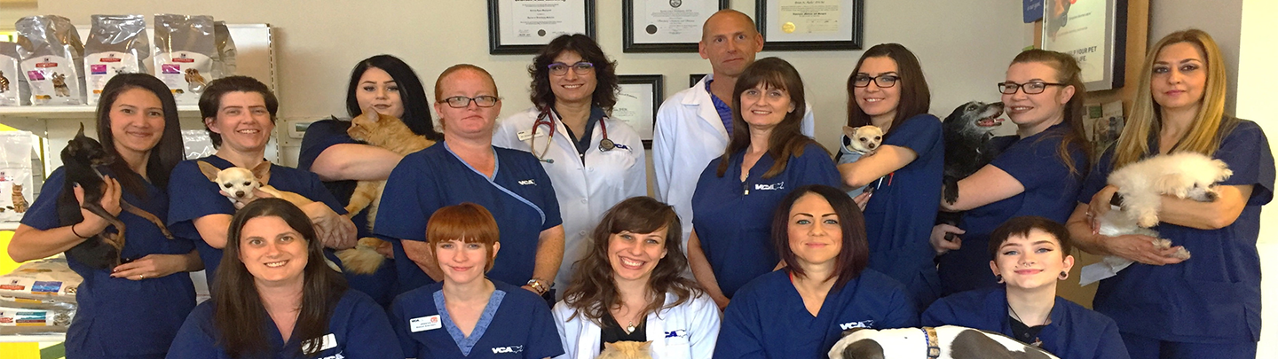 Team Picture of VCA Nellis Animal Hospital