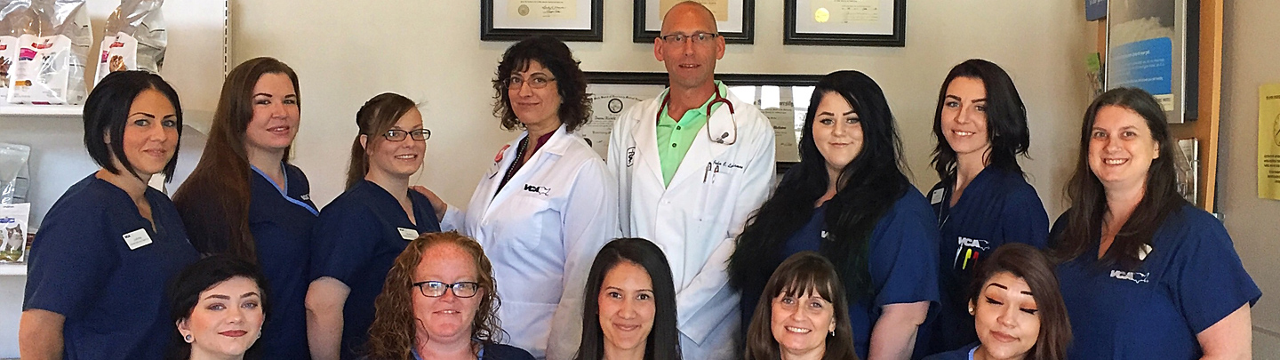 Team Picture of Nellis Animal Hospital