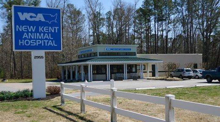 Homepage Hospital Picture of VCA New Kent Animal Hospital