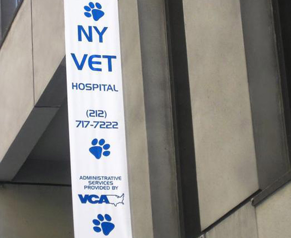 Hospital Picture of VCA New York Animal Hospital