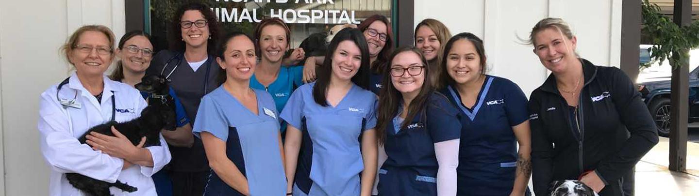 Image of: Edwardsville Il Emergency Care Vca Noahs Ark Animal Hospital Staff Page