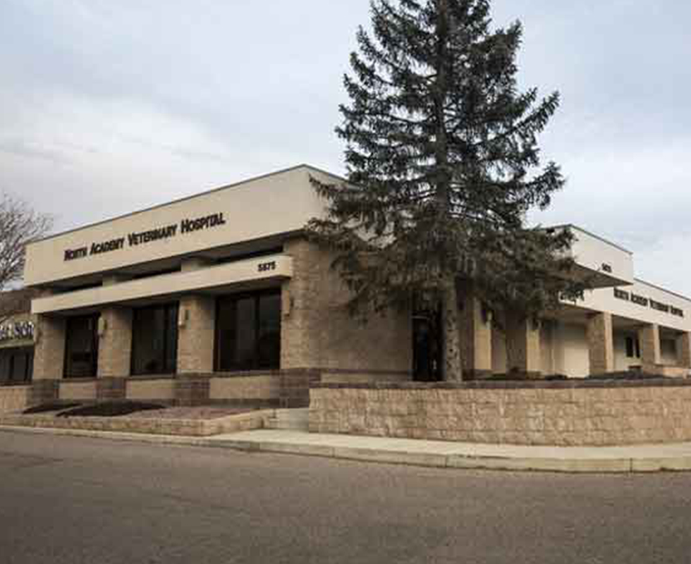 VCA North Academy Animal Hospital in Colorado Springs CO