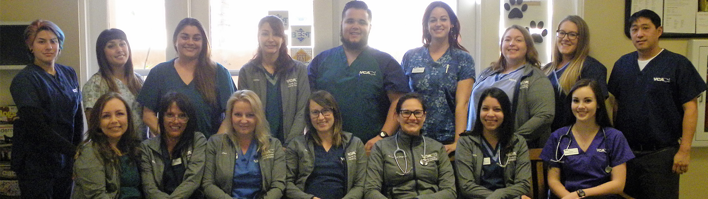 Team Picture of VCA North Coast Animal Hospital