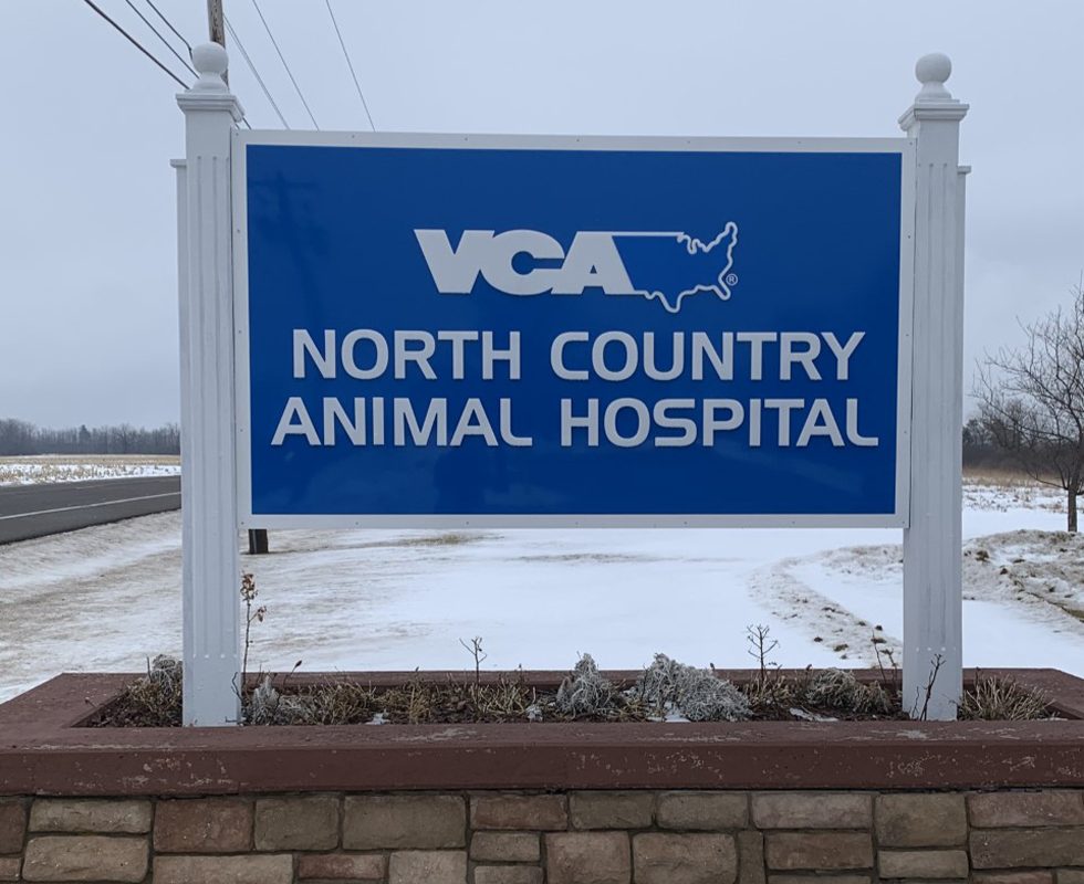 Our Hospital Vca North Country Animal Hospital