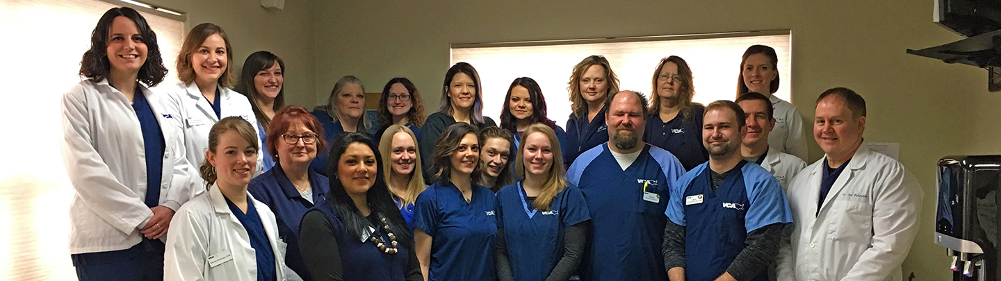 Team Picture of VCA North Division Animal Medical Center