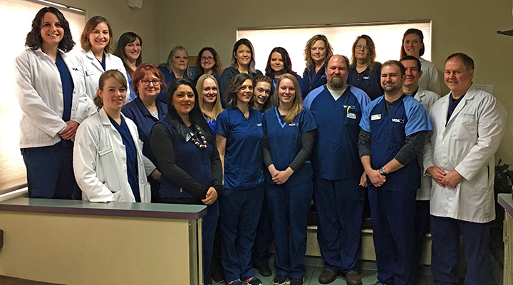 Homepage Team Picture of VCA North Division Animal Hospital