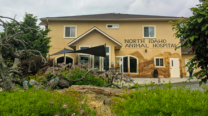 VCA North Idaho Animal Hospital