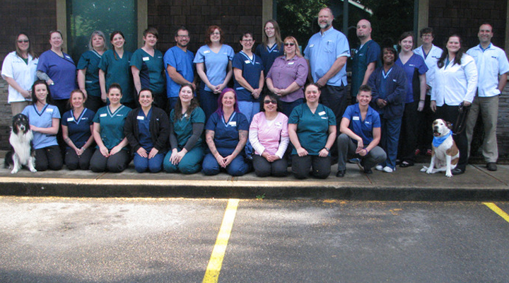 Team Picture of VCA North Portland Veterinary Hospital