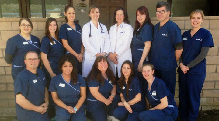 VCA Northside Animal Hospital - Our Team