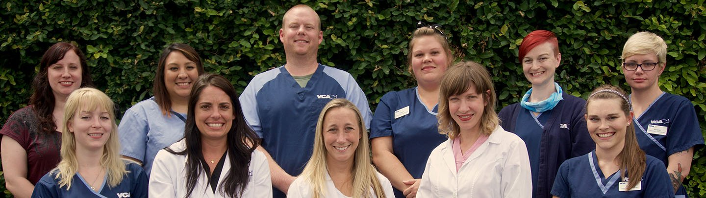 Team Picture of VCA Northwest Hills Animal Hospital