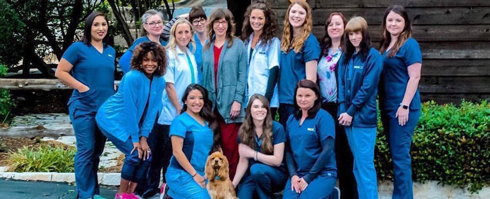 Homepage Team Picture of VCA Northwest Hills Animal Hospital