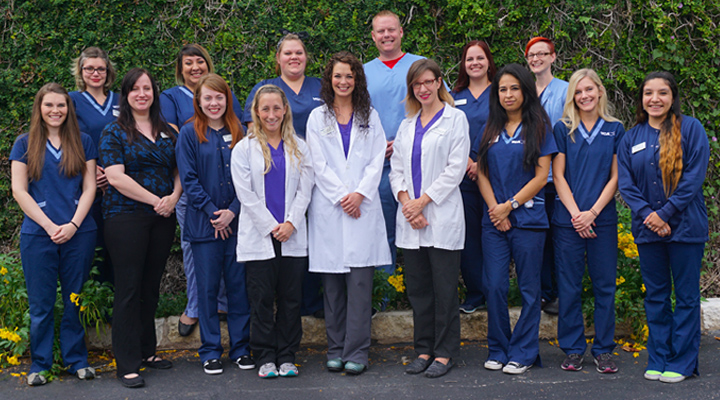 Homepage Team Picture of Northwest Hills Animal Hospital