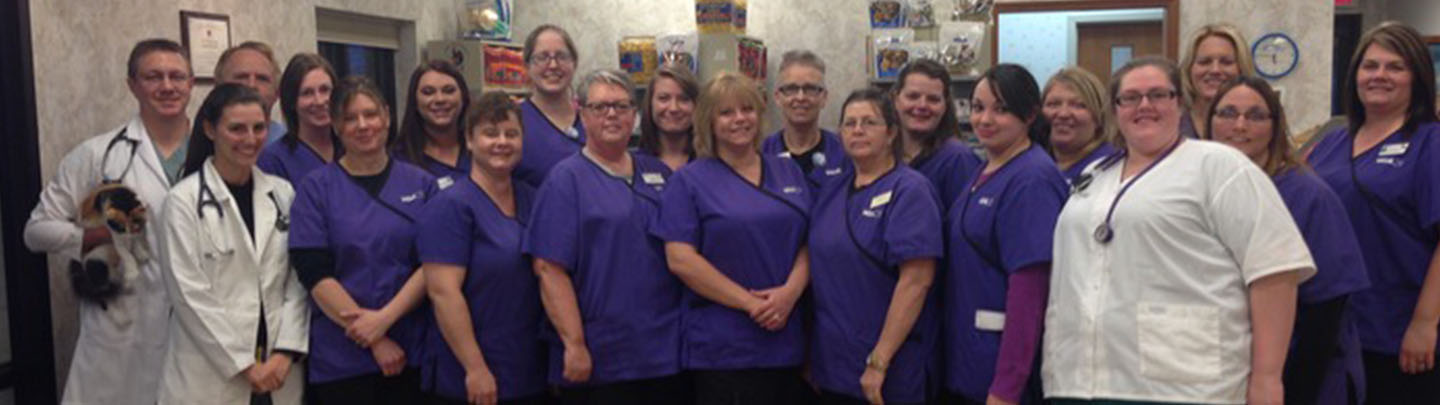 Team PIcture of VCA Northwood Animal Hospital