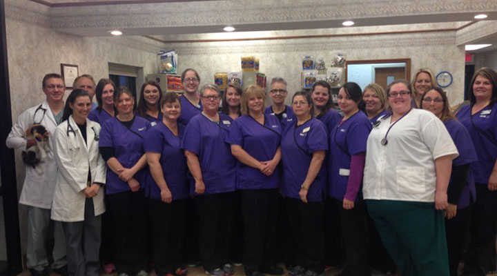 VCA Northwood Animal Hospital - Our Team