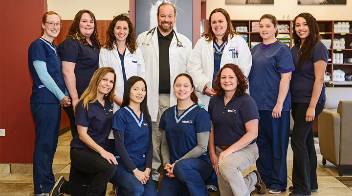 Homepage Team Picture of VCA Noyes Animal Hospital