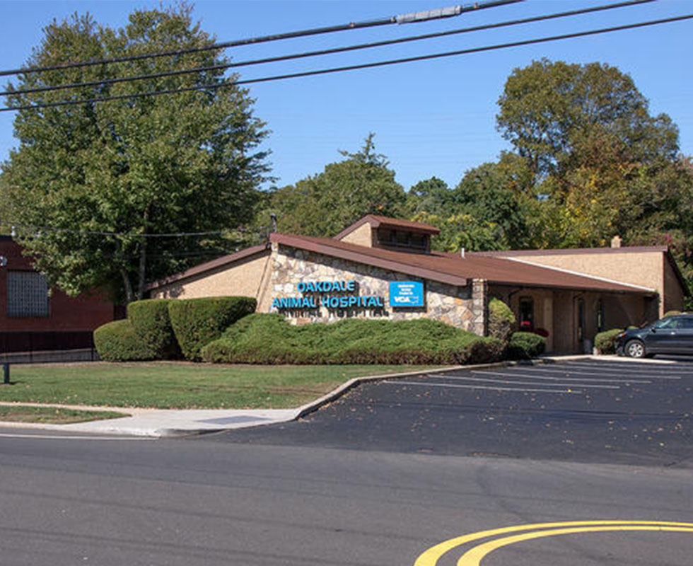 Hospital Picture of VCA Oakdale Animal Hospital