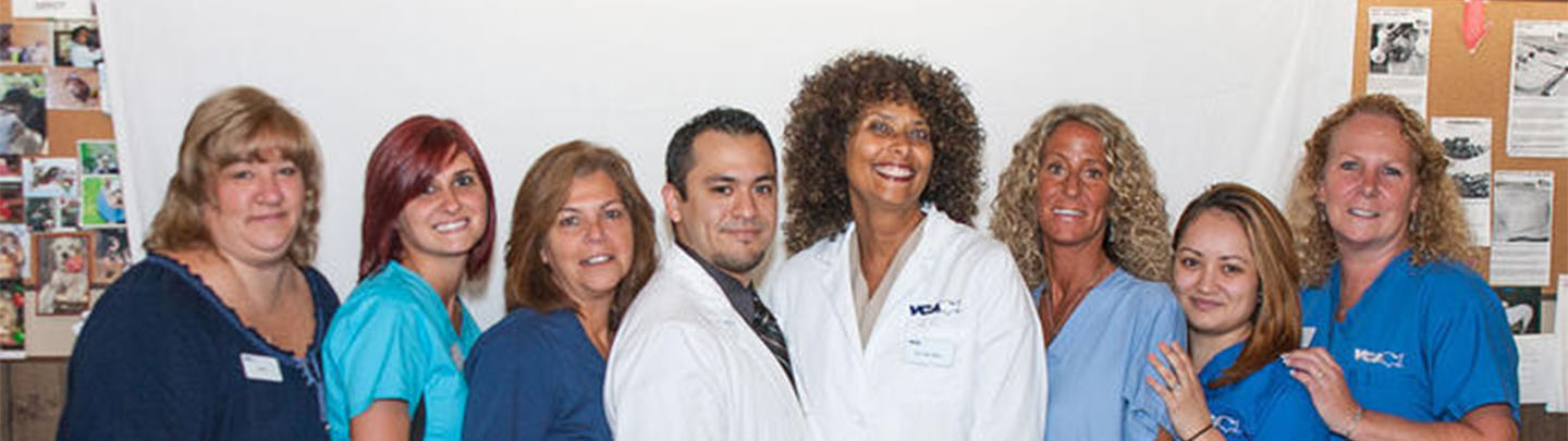 Team Picture of VCA Oakdale Animal Hospital
