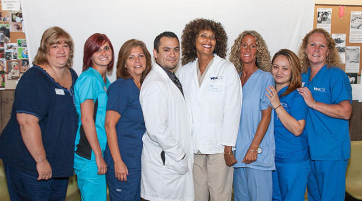 Homepage Team Picture of VCA Oakdale Animal Hospital