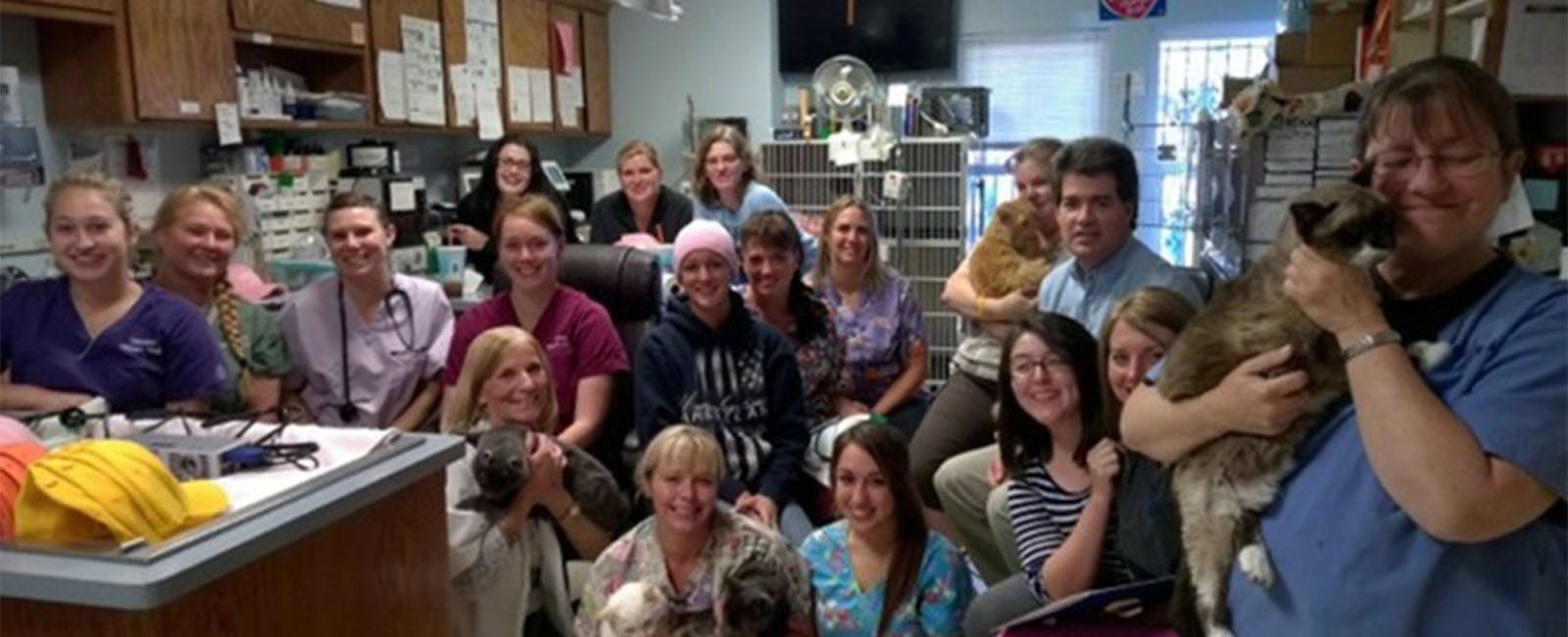 Homepage Team Picture of VCA Oakwood Animal Hospital