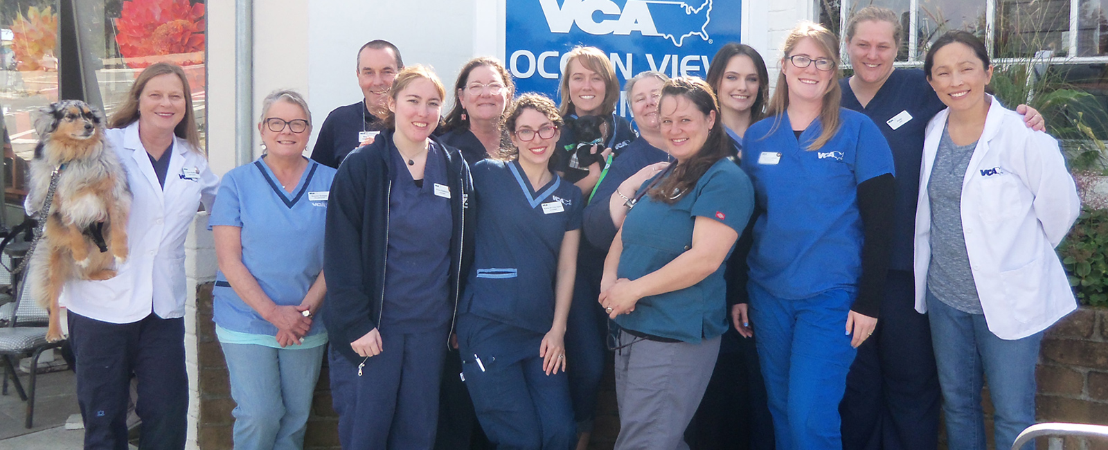 Team Picture of VCA Ocean View Animal Hospital