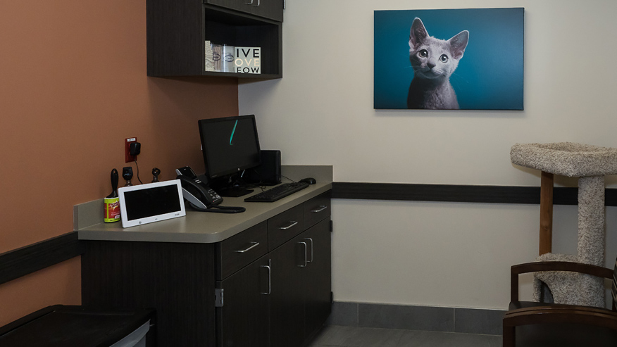 VCA Old Marple Animal Hospital Exam Room