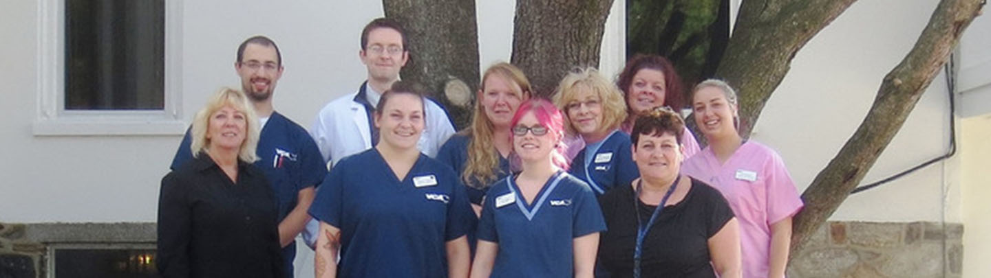 Team Picture of VCA Old Marple Animal Hospital