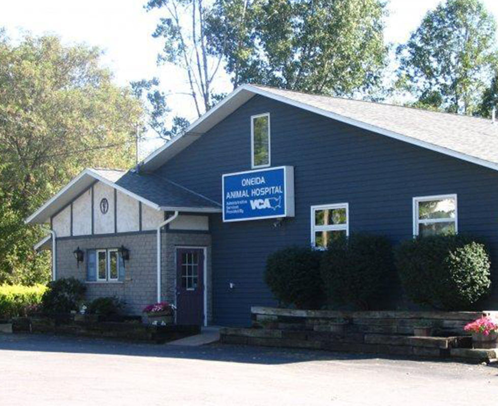 Hospital Picture of VCA Oneida Animal Hospital