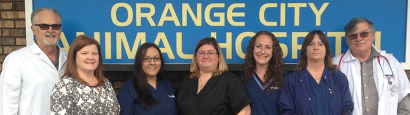 Team Picture of VCA Orange City Animal Hospital