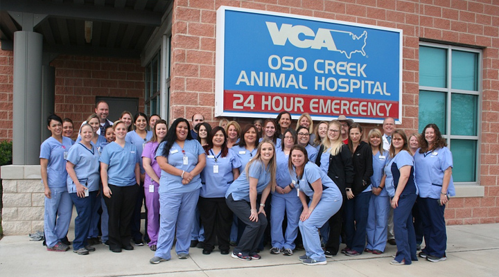 Homepage Team Picture of VCA Oso Creek Animal Hospital and Emergency Center