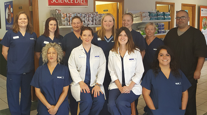 Homepage Team Picture of Owasso Animal Hospital