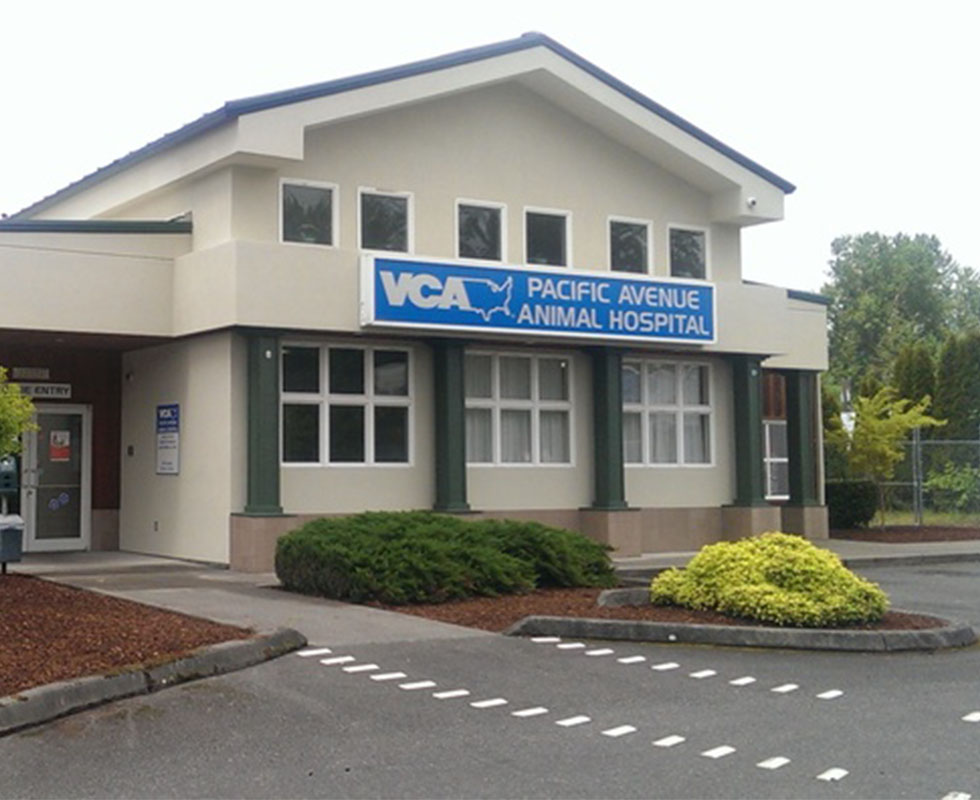 Hospital Picture of VCA Pacific Avenue Animal Hospital