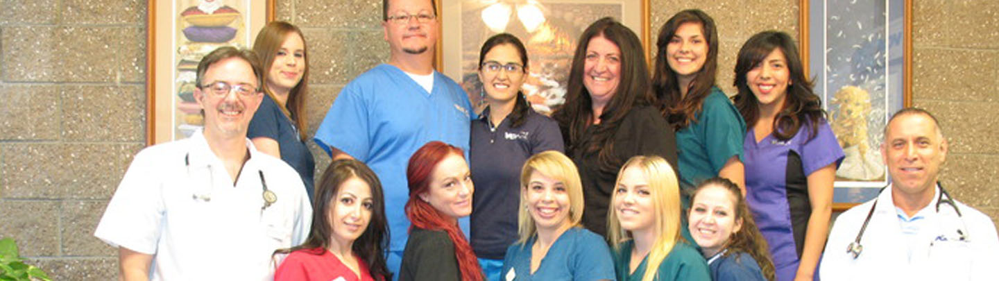 Team Picture of VCA Parkwood Animal Hospital