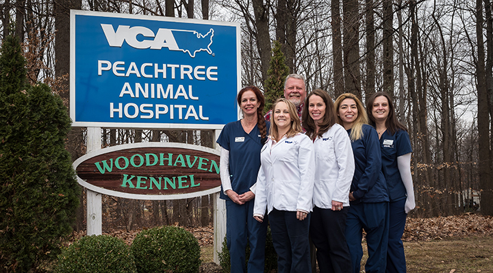VCA Peachtree MD Team