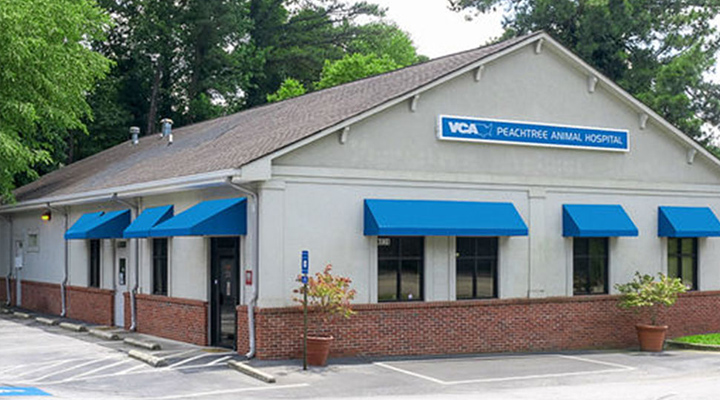 Homepage Hospital Picture of VCA Peachtree Animal Hospital