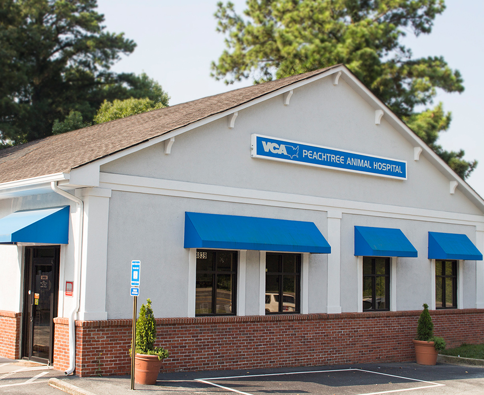 Hospital Picture of VCA Peachtree Animal Hospital