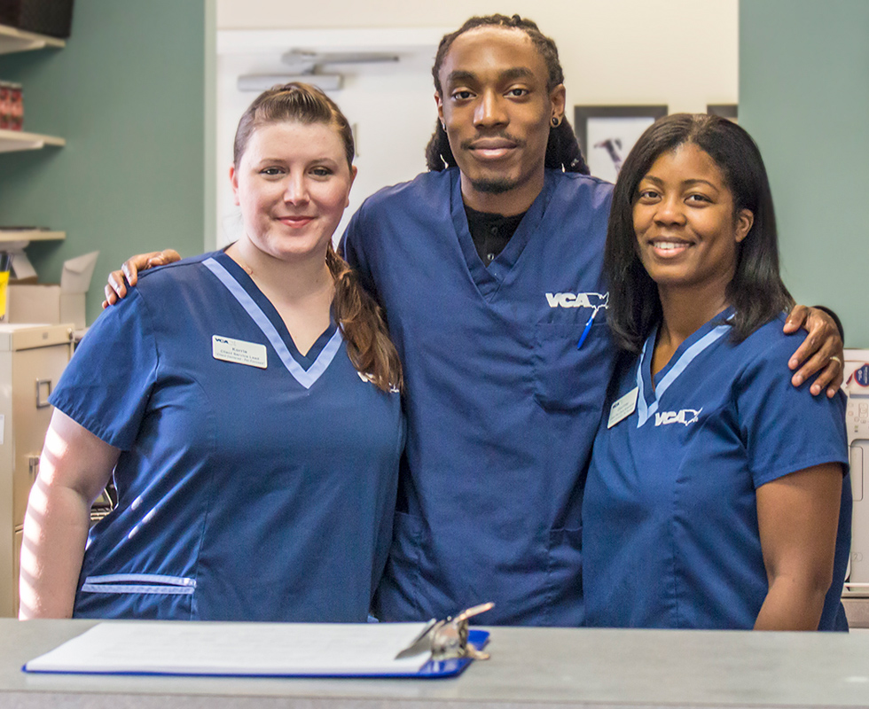 VCA Peachtree Animal Hospital Veterinary Support