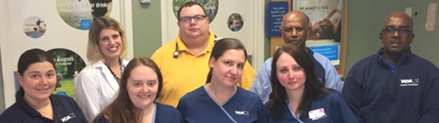 Team Picture of VCA Pets Are People Too Chamblee Animal Hospital