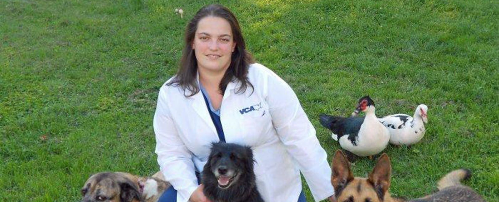 Homepage Team Picture of VCA Pets First Animal Hospital