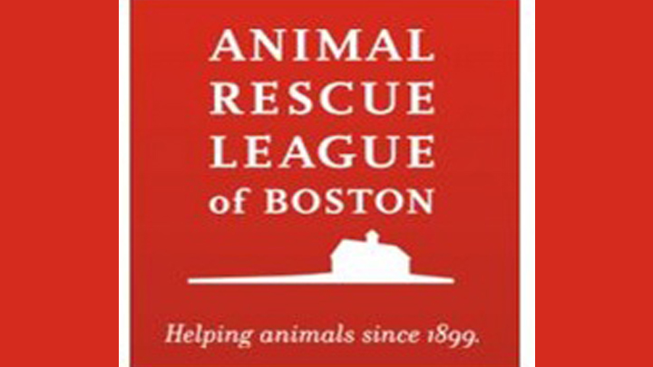 Brewster Animal Rescue League